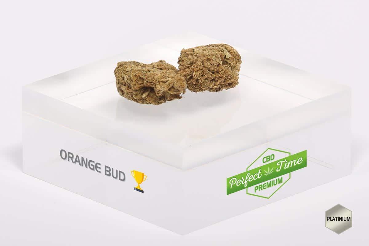 orangebud et cannabis la différence?